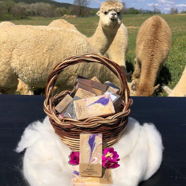 Saponetta artigianale alla cheratina di fibra di alpaca profumato alla fresia in fiore